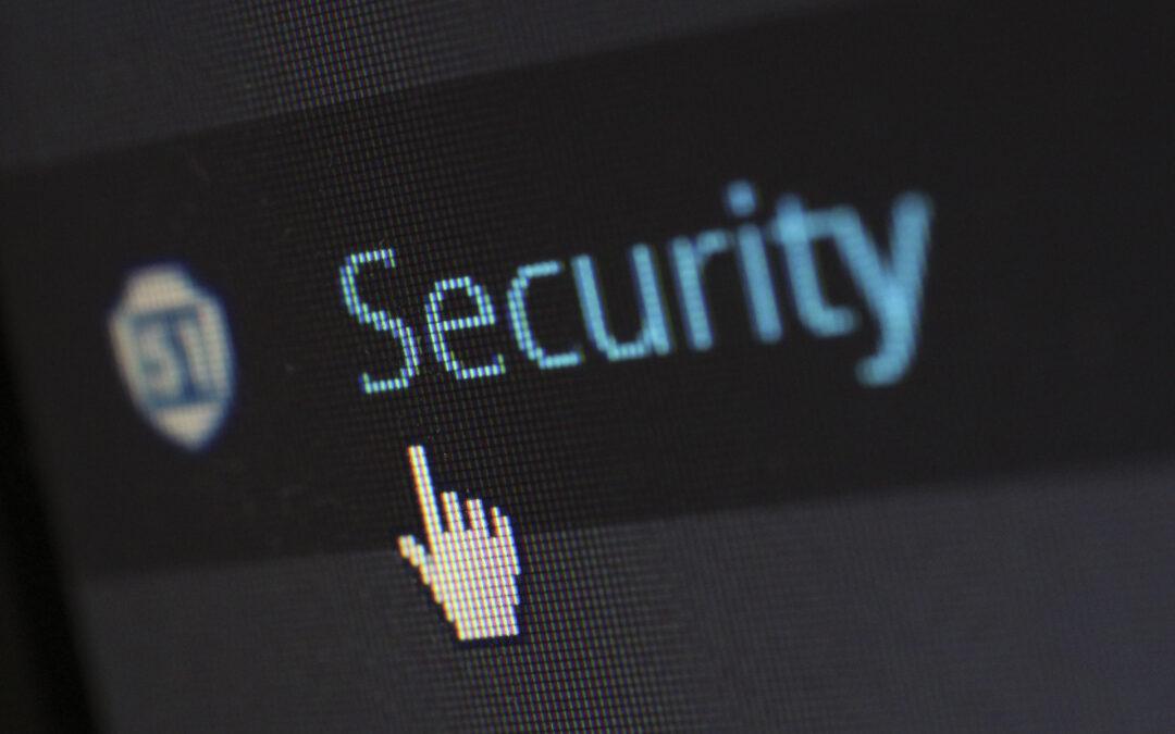 Ranking y Categorías de las Vulnerabilidades